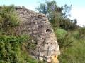 Tarnóczy kastély romjai - Kézdiszentlélek
