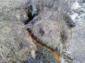 Kicsiloki-borvíz - Csíkkarcfalva