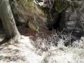 Medvebarlang - Borszék