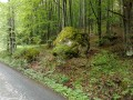 Bodvaji Emberfej-szikla - Fenyves-patak völgye