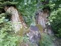 Ötszáz éves bükkfa - Kádár-út