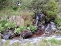 Kígyó-vízesés a Vargyas-patak oldalágán