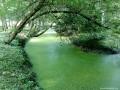 Az arborétum szigete - Árokalja