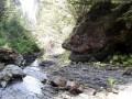 Kígyófej-szikla - Rejtek-patak
