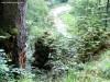 Sziklaerkély az Olt felett - Tusnádfürdő