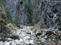 Macska-szoros - Királykő hegység