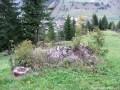 Bunkerek az Árpád-vonalon - Gyimesközéplok