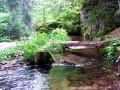 Visszafolyó vizesárok - Ivó