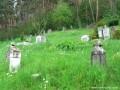Katolikus temető - Homoródalmás