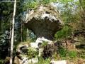 Kőgomba - Bakta-patak