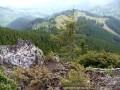 Sziklakilátó - Nedves-patak