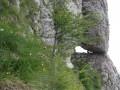Ablak-párkány - Bucsecs-hegység