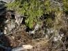 Tolvaj-kő