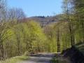 Lisztes-bérc - Jódtelep